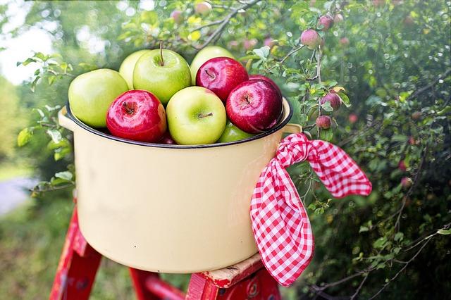 青りんごと赤りんごの違い