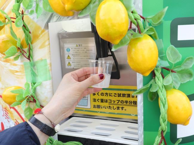 レモンサワーフェスティバル試飲コーナー
