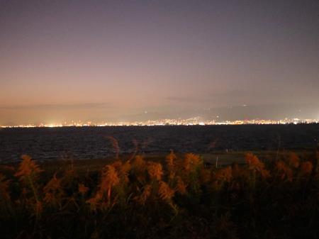 パームガーデン舞洲対岸の夜景