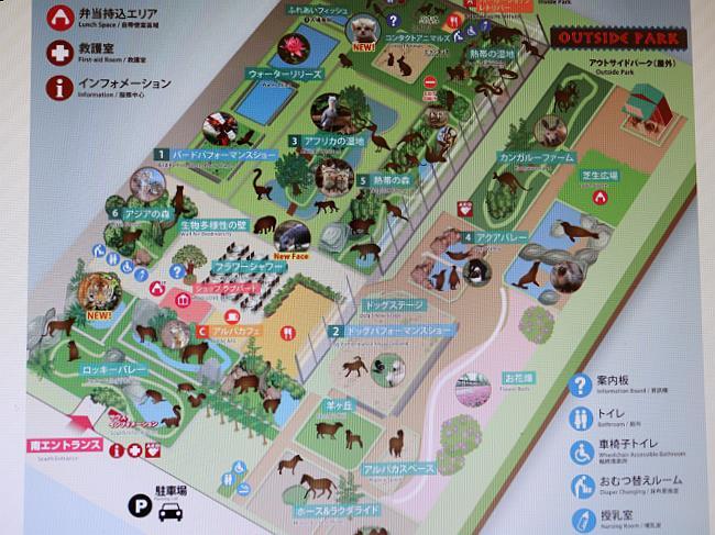 神戸どうぶつ王国マップ